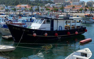 Barco Clássico Emília